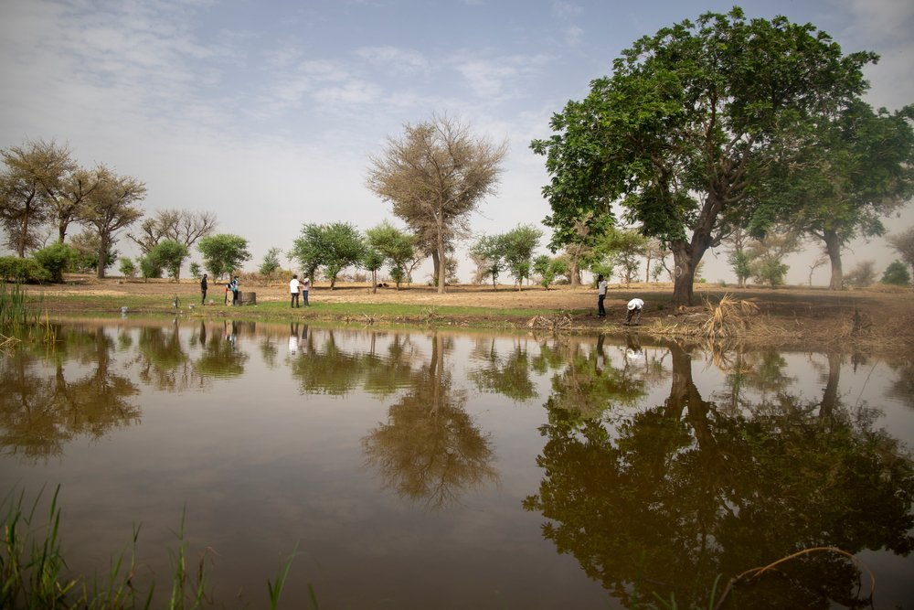 The water ponds in the village of Ara in the commune of Bandé in the department of Magaria in south of Niger.