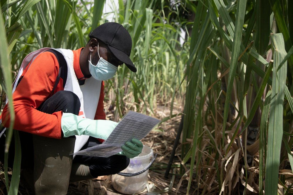 Once the water points are identified, the MSF team observe the level of larvae that exists. Then, they assess the necessary quantity of insecticides to use for each point according to the technical criteria the MSF agents have.