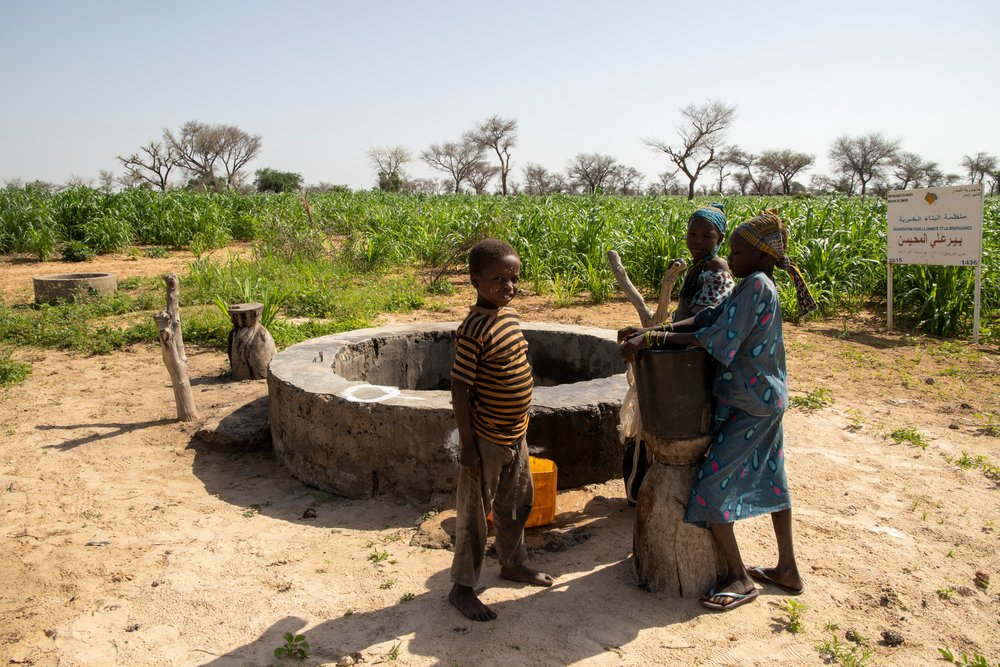 Young children getting water from a well in the village of Ara in the commune of Bandé in the department of Magaria in south of Niger.