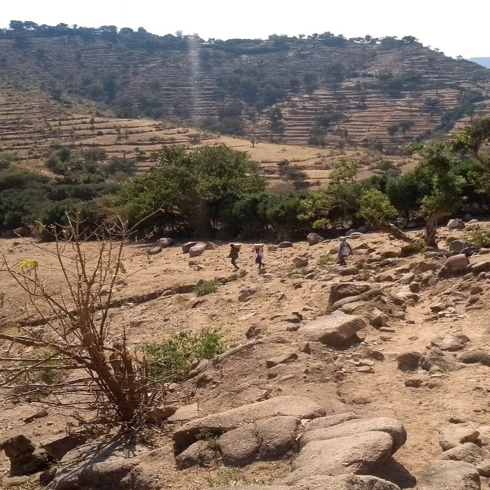 From Kalakil on the way to Tseda Emba. When it is impossible to reach certain locations with a car, the MSF teams carry medicines on their backs to ensure basic healthcare services for displaced people in remote locations in Tigray.