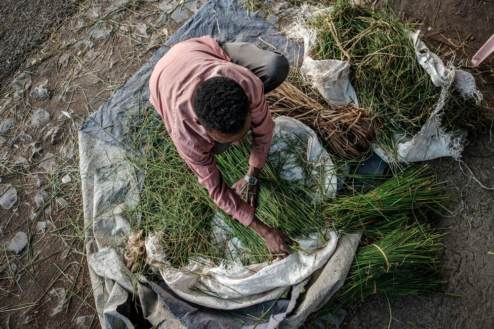 A man arranges packs of grass on the floor in a street in Alamata, Ethiopia, on December 8, 2020.
